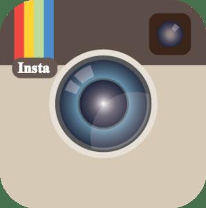 Social Media Icons - Insta